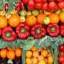 8 Fitokimia Dalam Sayur Meningkatkan Imunisasi Badan !