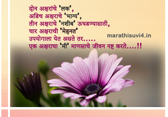 Character I Destroy Is Man Life Life Quotes Marathi Suvichar