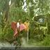 Mersal Mix vijay romance with samantha