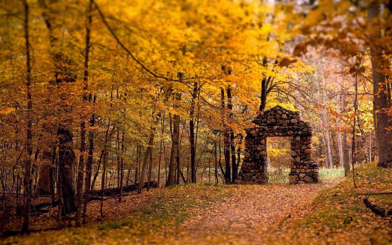 Snooping Around: Random Facts About     Autumn