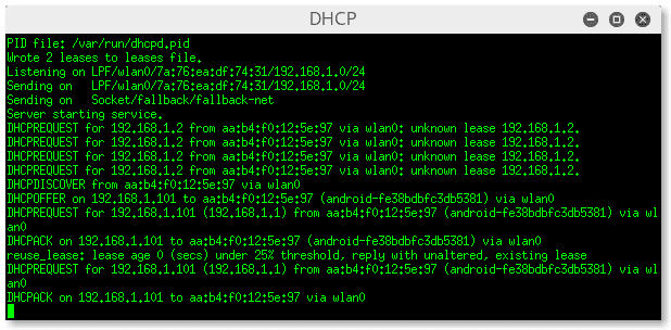 DHCP SERVER Custom Linset Airmon-ng