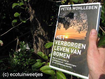 het verborgen leven van bomen, Peter Wohlleben, boekbespreking, recensie