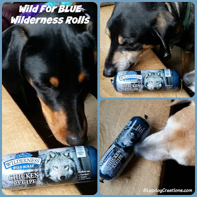 The Lapdogs are Wild for BLUE Wilderness Wild Rolls #BlueBuffalo #ChewyInfluencer #LapdogCreations ©LapdogCreations #sponsored