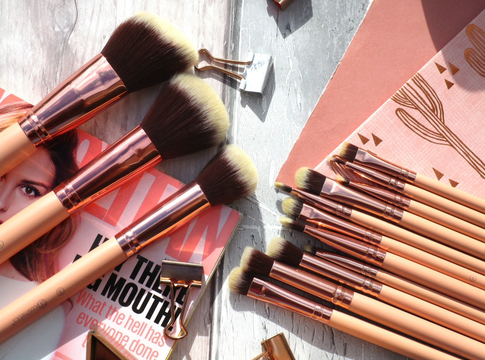 16b92141af6bd The BH Cosmetics Chic Brush Set  consists of 14 cruelty free - synthetic  brushes which all have gorgeous peach rose gold coloured handles and two  tones ...
