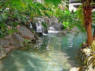 Disney's Polynesian Resort Waterfall