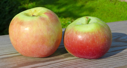 Two apples side by side