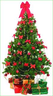 Awesome Christmas Tree Photos