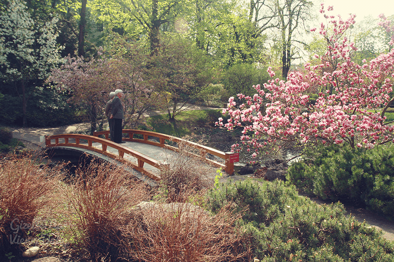 park old couple reminiscing