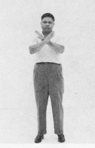 Tai Chi Chuan (Square Form) 62. Cross Hands