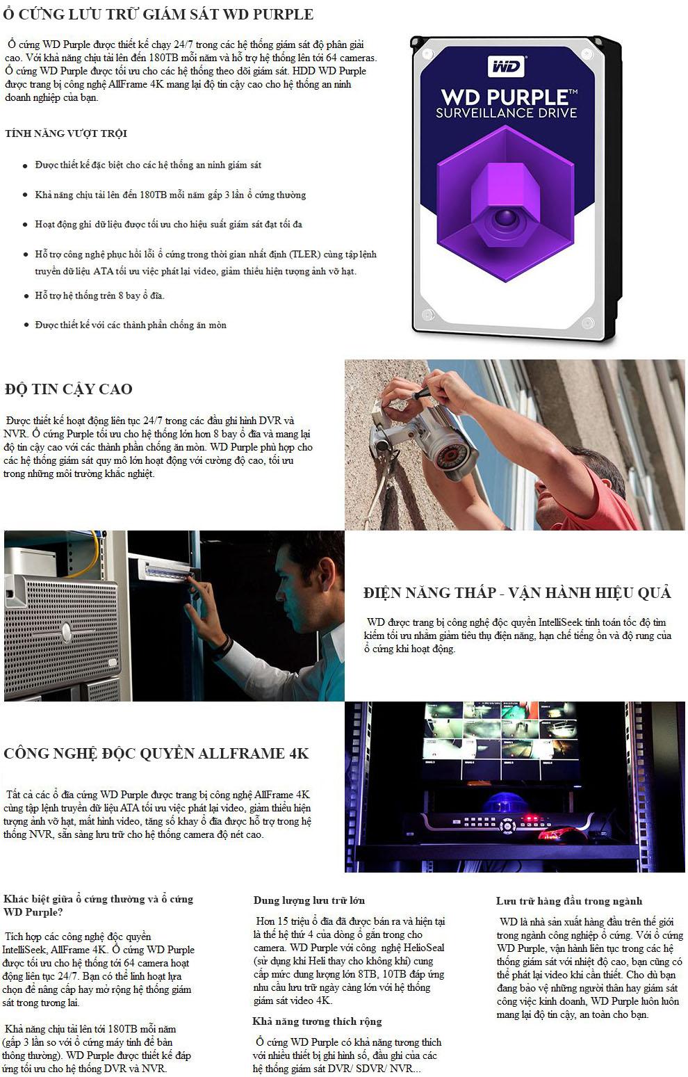ổ cứng Western Purple tím