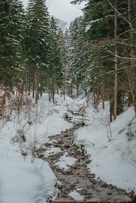 Nachtrodeln und Winterwandern in Saalfelden-Leogang  im Salzburgerland  Winterwanderung zur Einsiedelei  Nachtrodeln am Biberg 06