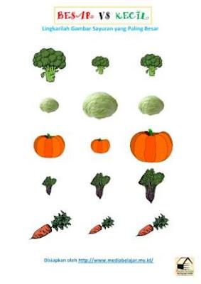 Melingkari Gambar Sayuran Paling Besar