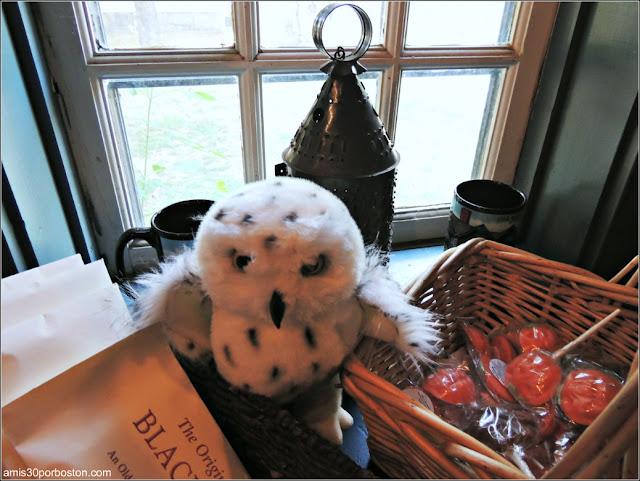 Tienda de Souvenirs en The Witch House - The Jonathan Corwin House