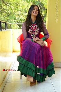 Actress Pooja Jhaveri Latest Stills in Purple Salwar Kameezt at Dwaraka Success Meet  0235.JPG