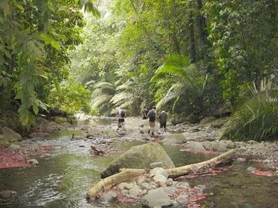 Aventureros en la jungla de Darién