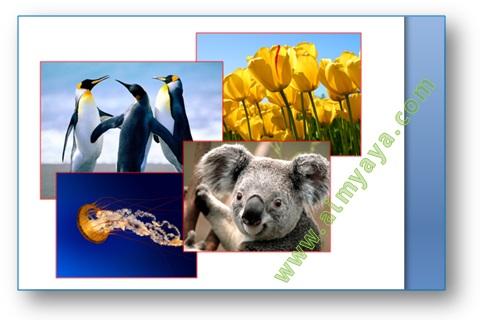 Cara Menggabungkan Gambar Di Microsoft Word Cara Aimyaya Cara Semua Cara