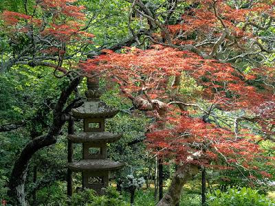 Spring garden: Jochi-ji