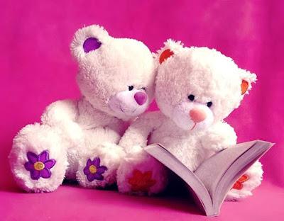 Gambar Wallpaper Boneka Beruang putih Membaca Buku