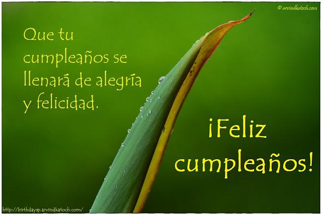 Tarjetas, Cumpleaños, llenará, alegría, felicidad, Feliz cumpleaños,