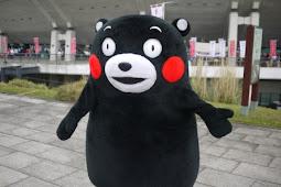 くまモン(熊本県のPRキャラクター)人気上昇中