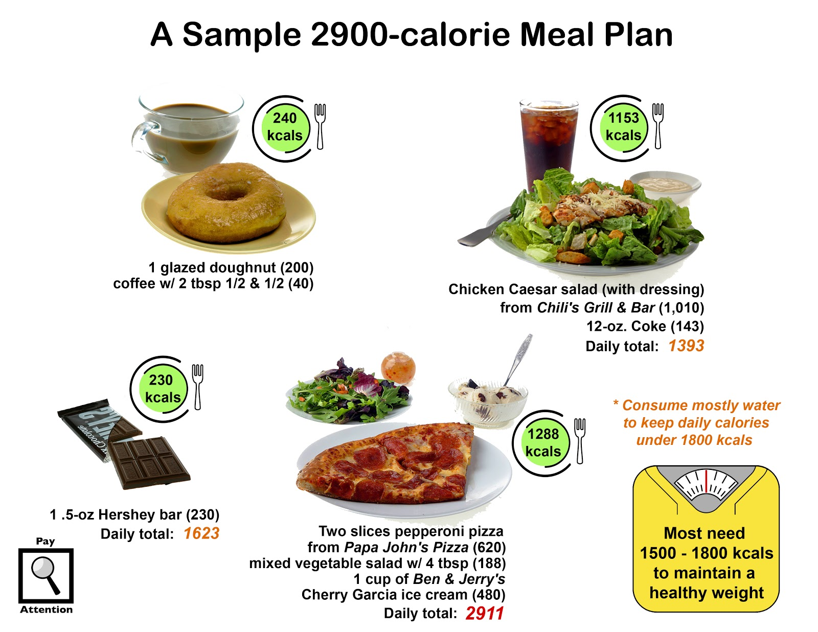 2900 calorie a day diet
