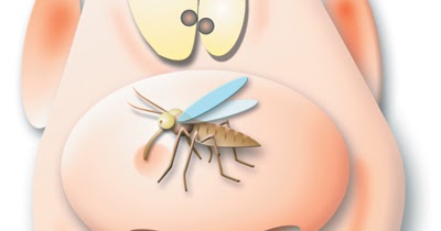 Banish Bugs Amp Crack Down On Critters Natural Remedies