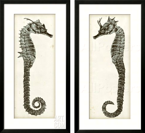 Seahorse Wall Art seahorse wall art diptych -shop the look - completely coastal