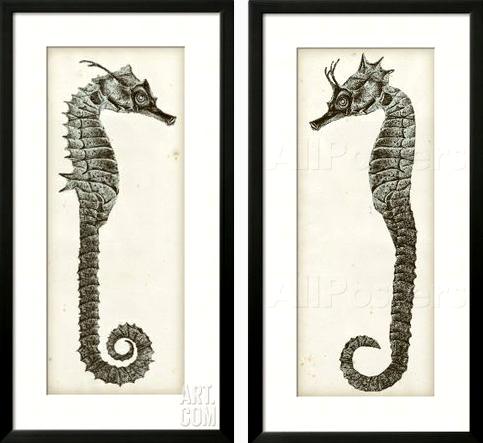 Seahorse Wall Art Diptych -Shop the Look - Coastal Decor ...