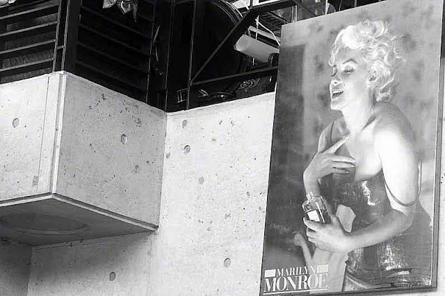 black and white Marilyn Monroe poster