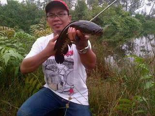 Mancing gabus rawa di daerah Pundu Kalimantan Tengah