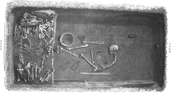 Découverte de la première guerrière Viking