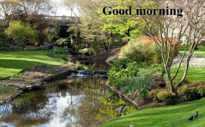 Good morning images with nature HD Download - scenery