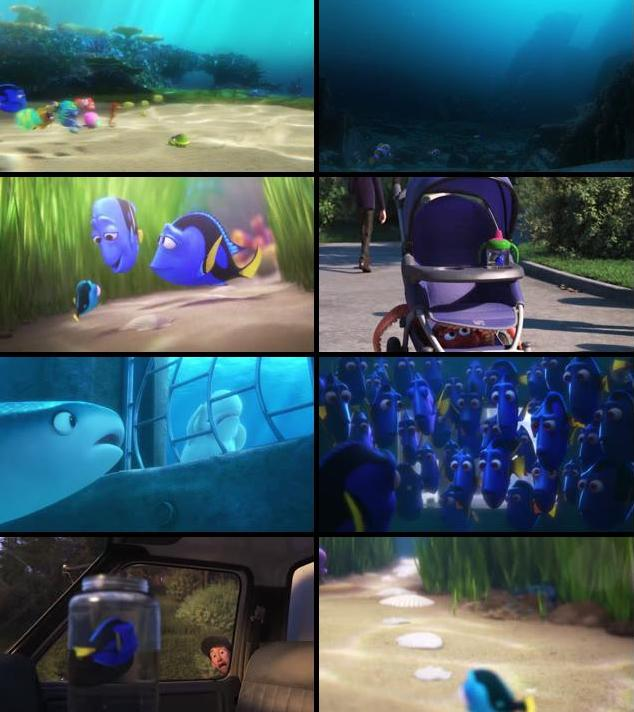 Finding Dory 2016 Dual Audio ORG Hindi 480p BluRay