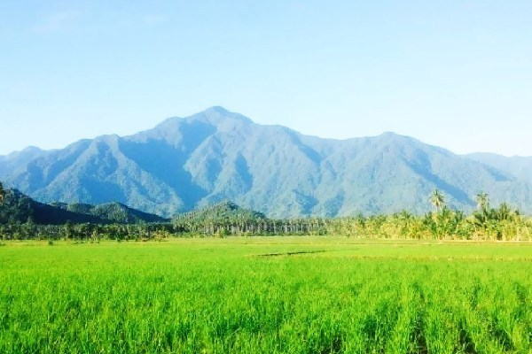 Gunung Sojol