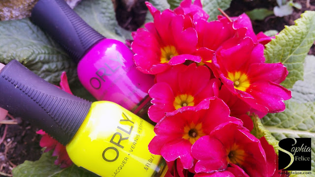 orly pch - paradise cove_02