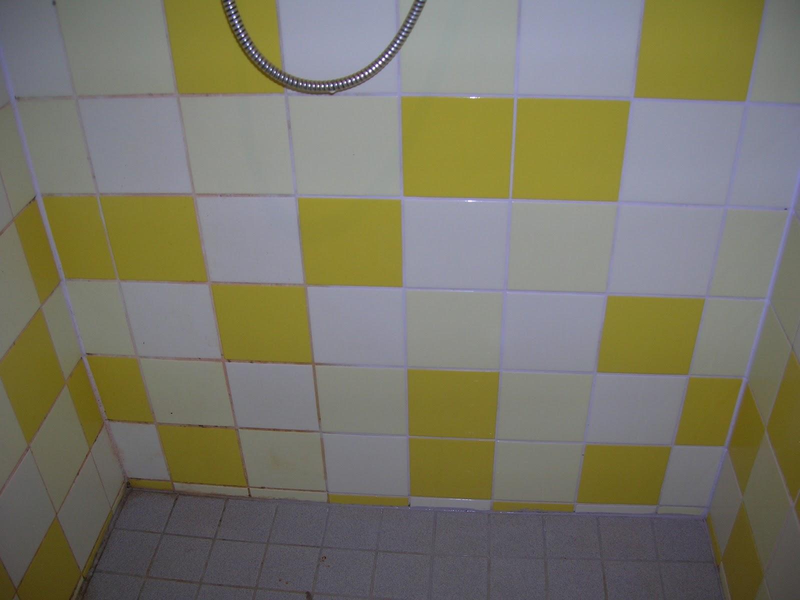 Idées de Cuisine » badkamer schoonmaken producten   Idées Cuisine
