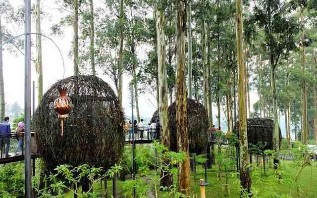 Lutung Kasarung Area Wisata Dusun Bambu