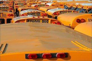 Parked school buses (Credit: Image credit: Rupert Ganzer | Flickr) Click to Enlarge.