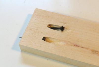 Pocket Holes DIY