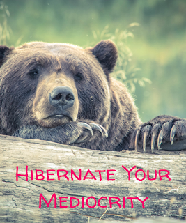 Hibernate Your Mediocrity