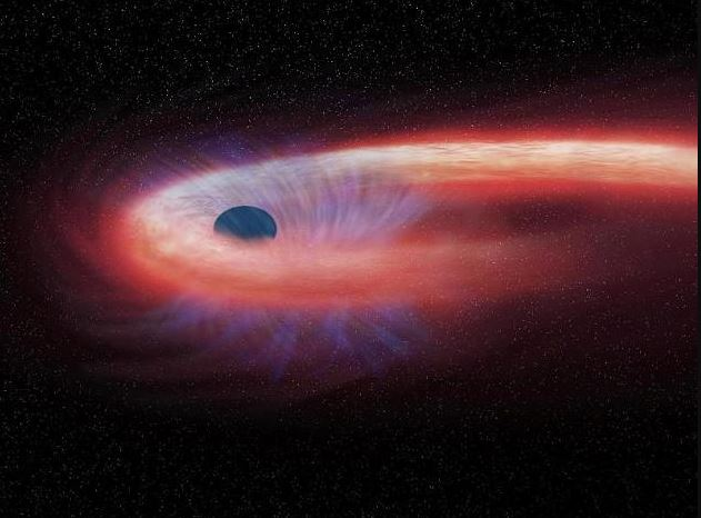 This graph shows a star that is swallowed by a black hole, leaving behind a red tail of X-rays.