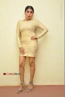 Actress Pooja Roshan Stills in Golden Short Dress at Box Movie Audio Launch  0107.JPG