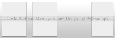 12x36 Wedding Marriage Album Design Psd