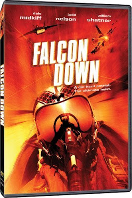 falcon down 2001