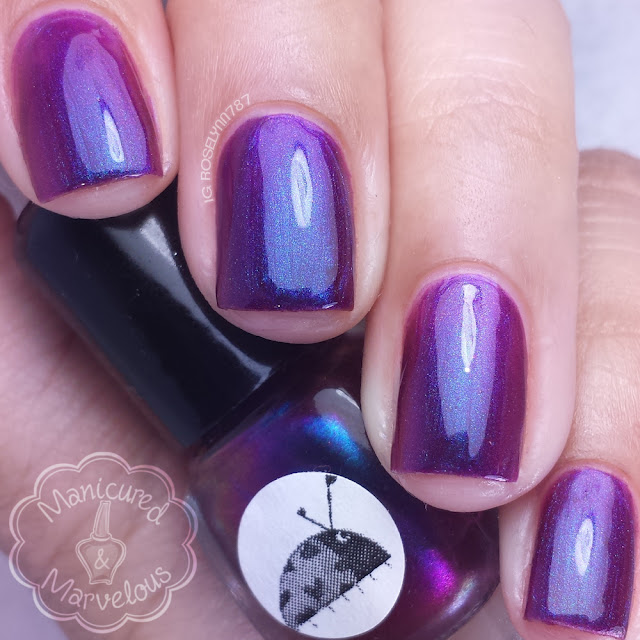 Ladybug Lacquer - Before the Sunrise