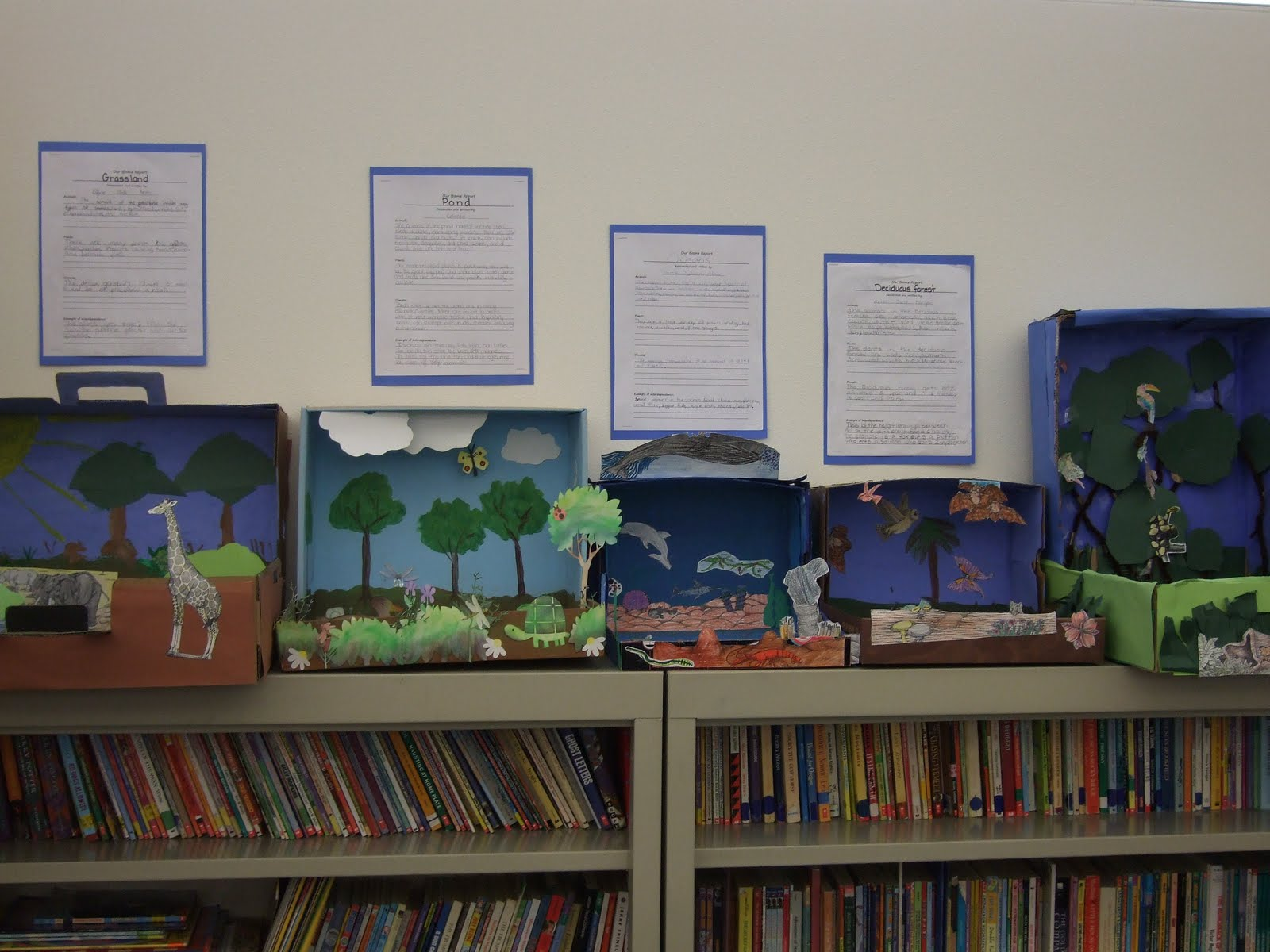 The Inspired Classroom Ecosystem Dioramas