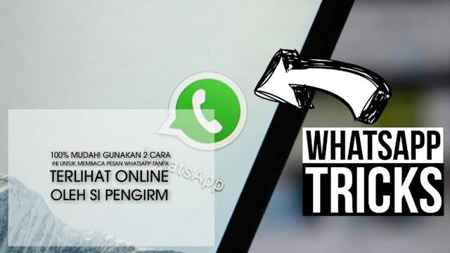 cara membaca pesan Whatsapp tanpa terlihat online tanpa aplikasi dan root