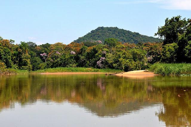 Vista em passeio de barco pelos rios de Itanhaém: pesca e turismo de observação.