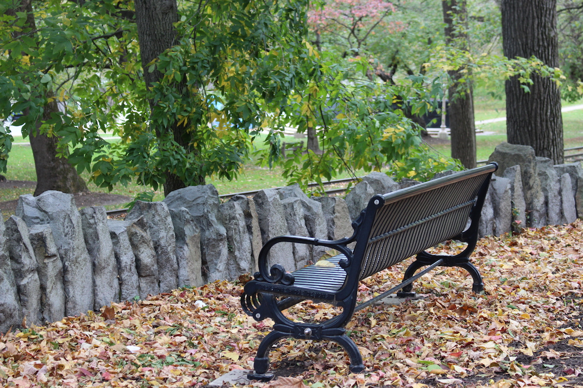 This is a photo of a park bench surrounded by hundreds of crispy orange and brown leaves, in Brandywine Park.