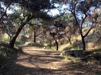 Walking north in the lower section of Colby Trail in Glendora